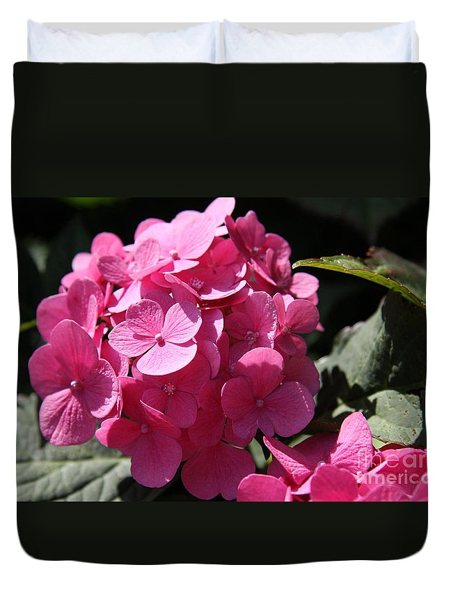 Hydrangea Duvet Cover featuring the photograph Hydrangea by Christiane Schulze Art And Photography