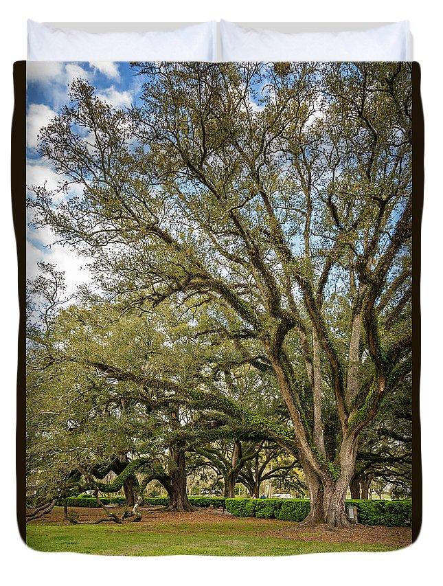 Oak Alley Plantation Duvet Cover featuring the photograph Oak Alley Backyard by Steve Harrington