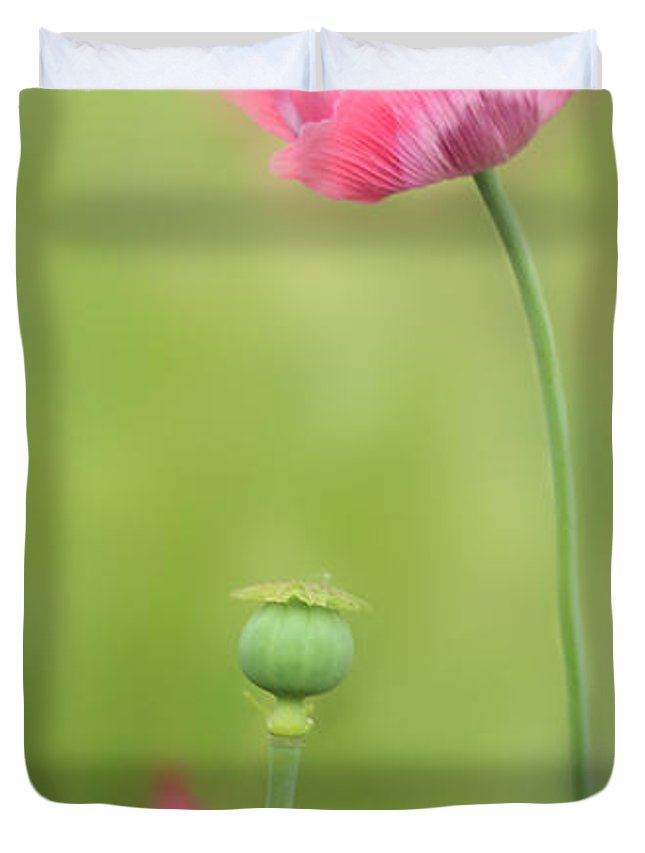Poppy Duvet Cover featuring the photograph Poppy by Heike Hultsch