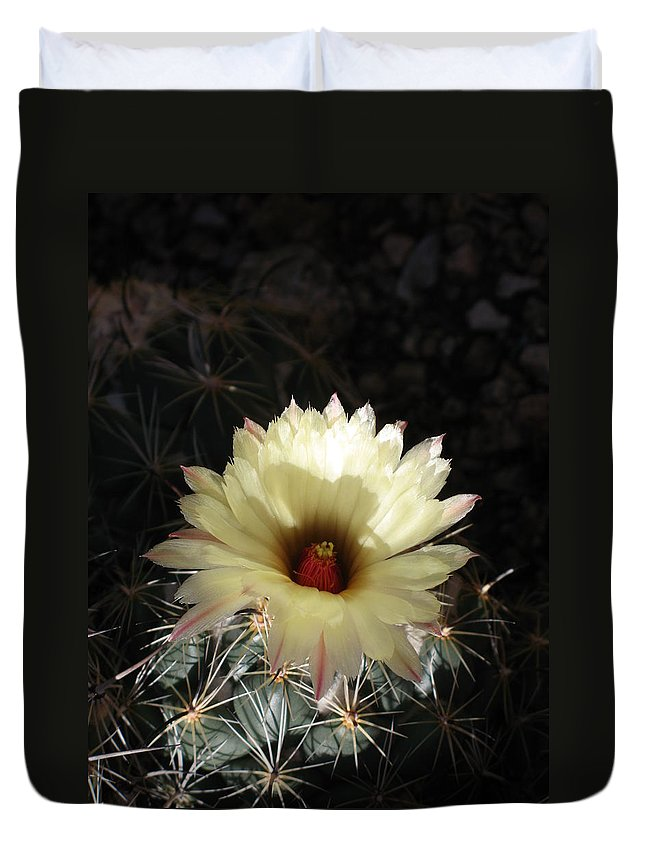 Cactus Duvet Cover featuring the photograph Pure Beauty by Christiane Schulze Art And Photography