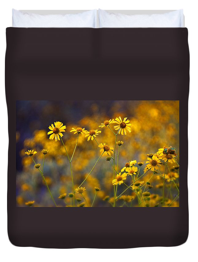 Yellow Brittlebush Duvet Cover featuring the photograph Simplicity by Saija Lehtonen