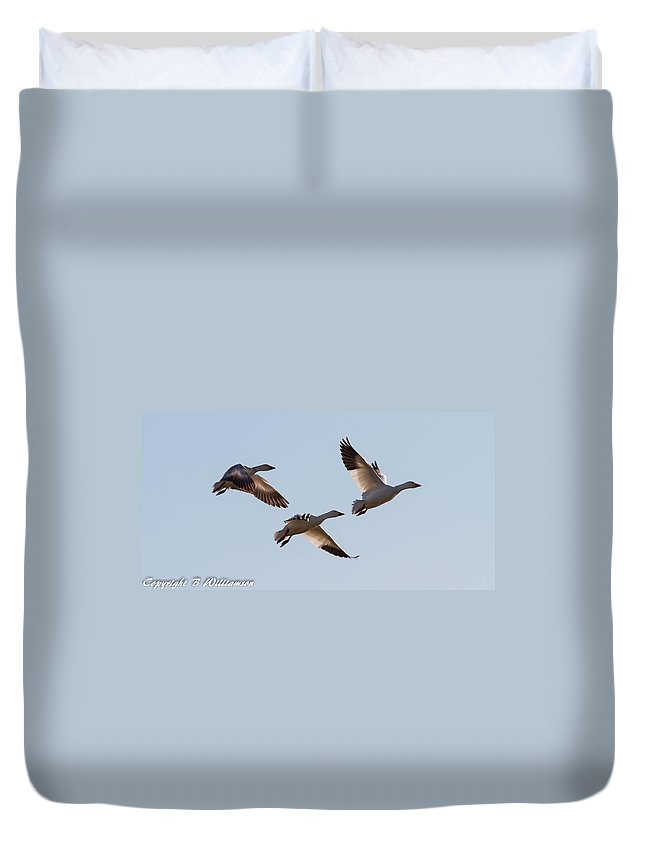 Geese Duvet Cover featuring the photograph Snow Geese by Brian Williamson