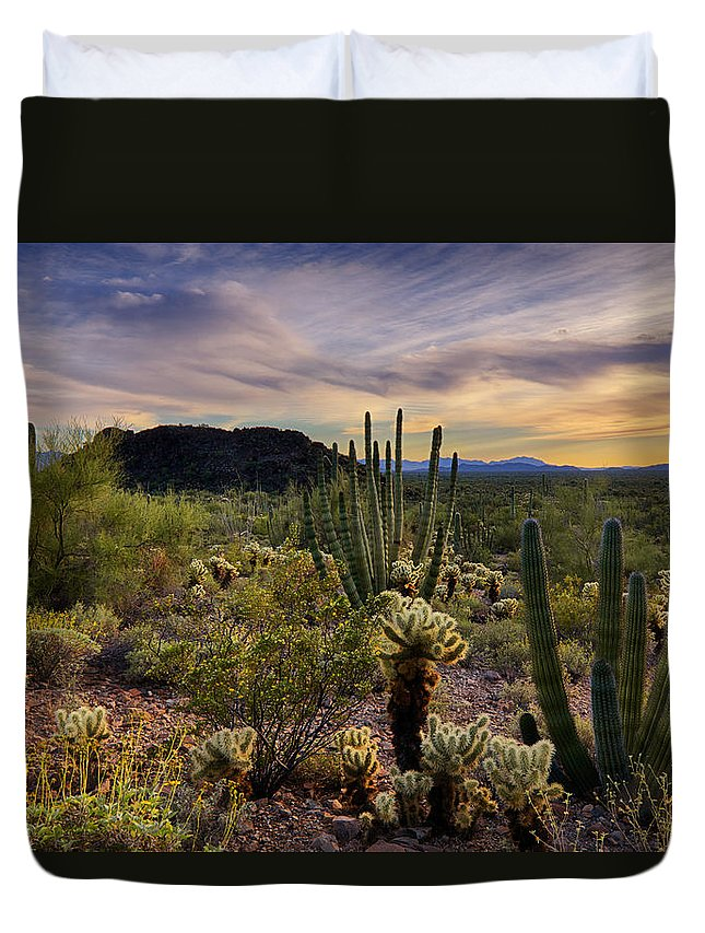 Sunset Duvet Cover featuring the photograph Sonoran Desert Sunset by Saija Lehtonen