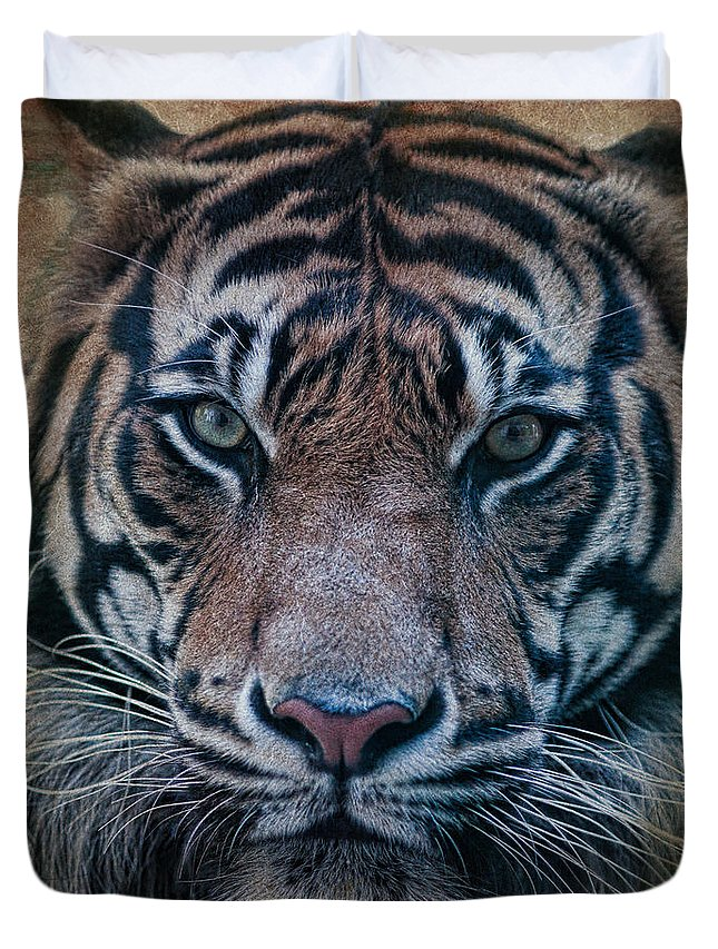 Tiger Duvet Cover featuring the photograph Tiger by Steve McKinzie