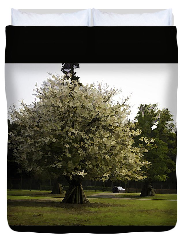 Adventure Park In Scotland Duvet Cover featuring the photograph Tree With Large White Flowers by Ashish Agarwal