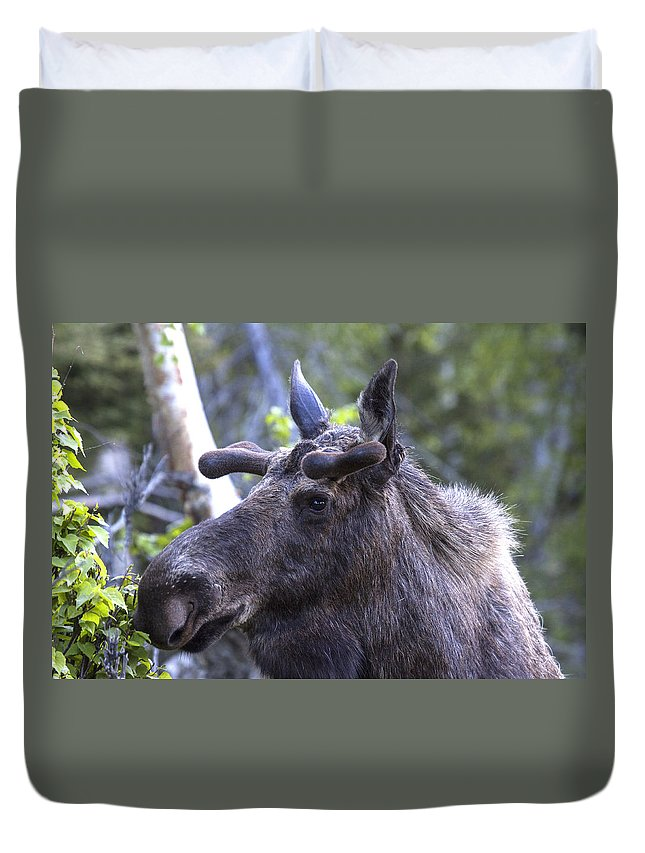 Doug Lloyd Duvet Cover featuring the photograph Whats That by Doug Lloyd