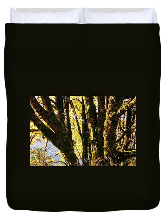 Original Duvet Cover featuring the photograph Autumn 3 by J D Owen