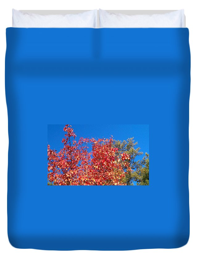 Fall Duvet Cover featuring the photograph Autumn Color by Kenny Glover