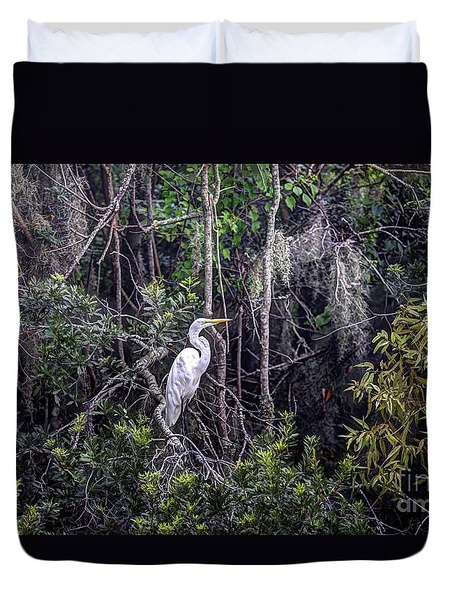White Heron Duvet Cover featuring the photograph Heron Colors by Dale Powell