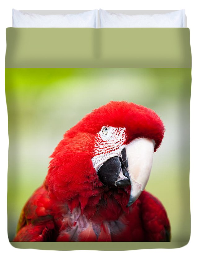 Parrot Duvet Cover featuring the photograph Parrot by Sebastian Musial