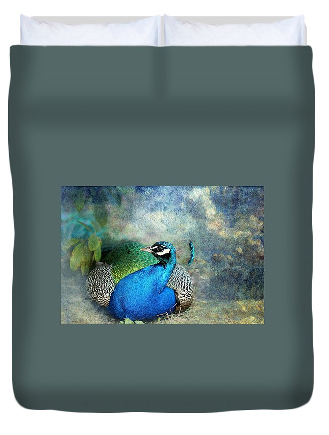 Peacock Duvet Cover featuring the photograph Peacock by Heike Hultsch