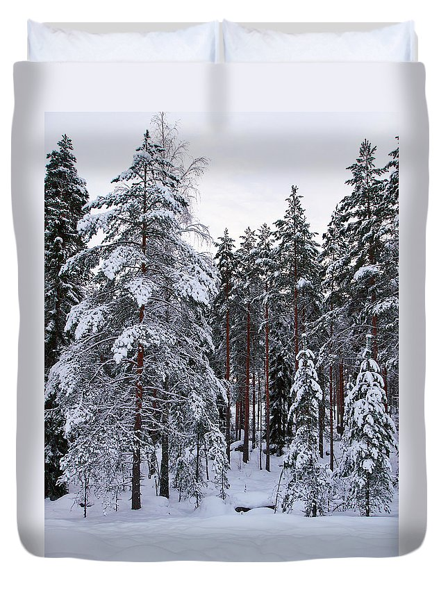 Lehto Duvet Cover featuring the photograph Pine Forest Winter by Jouko Lehto