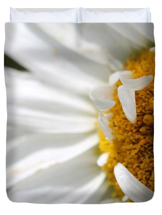 Mccombie Duvet Cover featuring the photograph Shasta Daisy Named Paladin by J McCombie