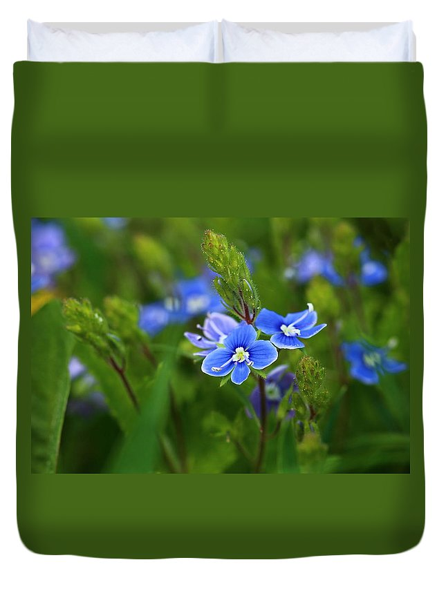 Morning Duvet Cover featuring the photograph Spring by Heike Hultsch