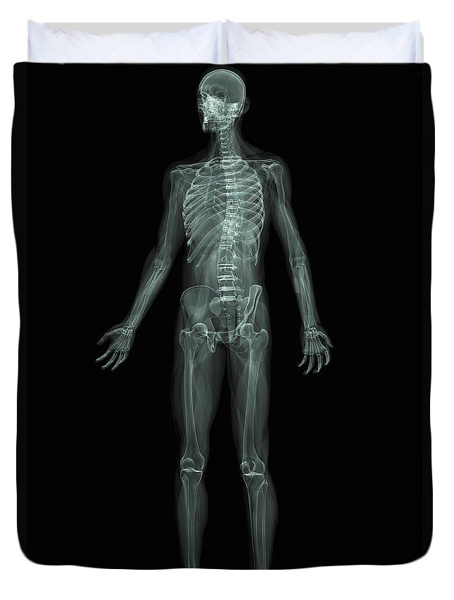 Transparent Skin Duvet Cover featuring the photograph The Skeletal System by Science Picture Co