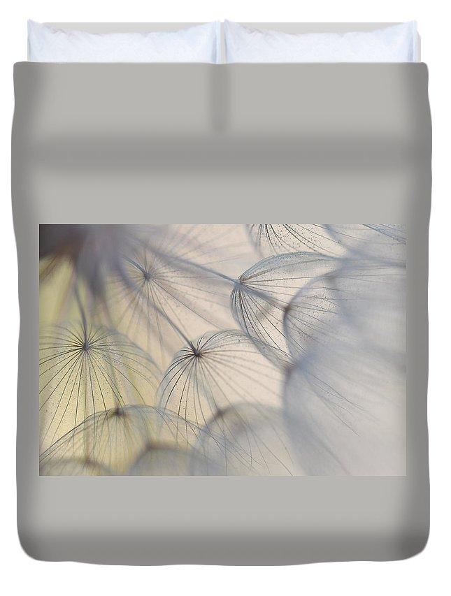 Wiesenbocksbart Duvet Cover featuring the photograph Wiesenbocksbart by Heike Hultsch