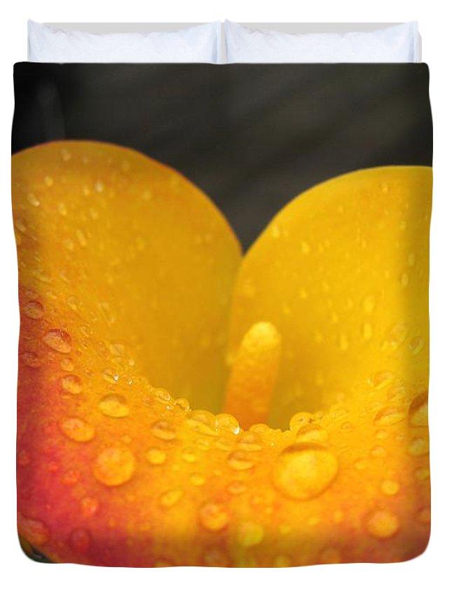 Zantedeschia Duvet Cover featuring the photograph Zantedeschia Named Flame by J McCombie