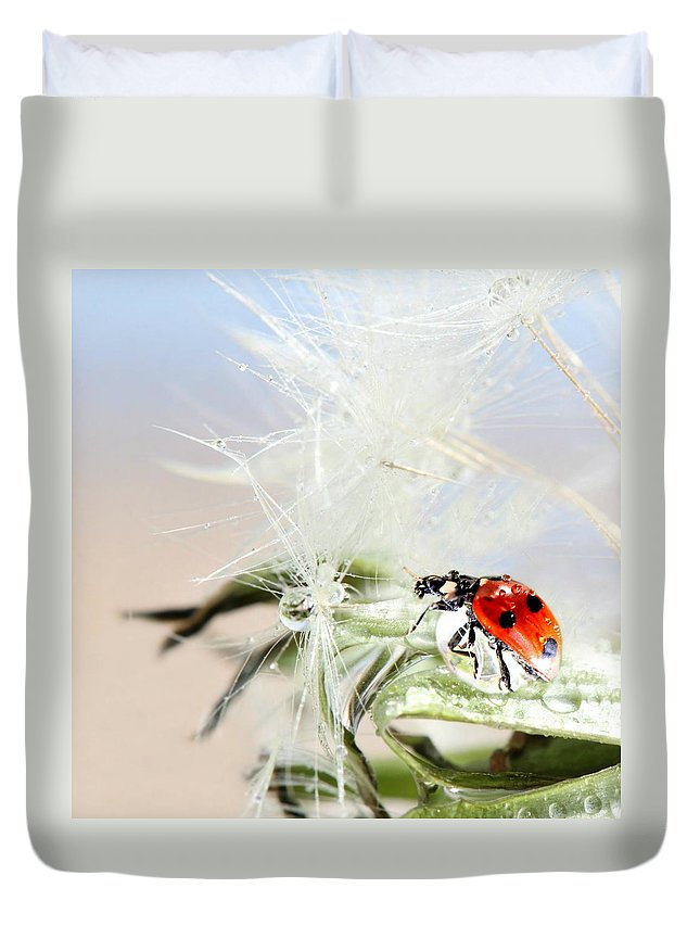 Drops Duvet Cover featuring the photograph Ladybug by Heike Hultsch