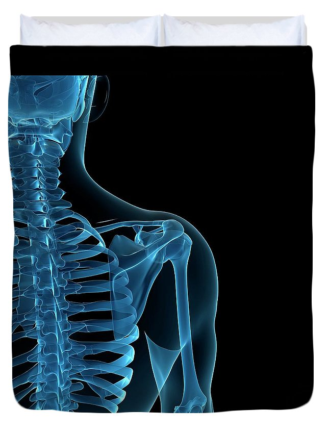 Anatomy Duvet Cover featuring the digital art Upper Body Bones, Artwork by Sciepro