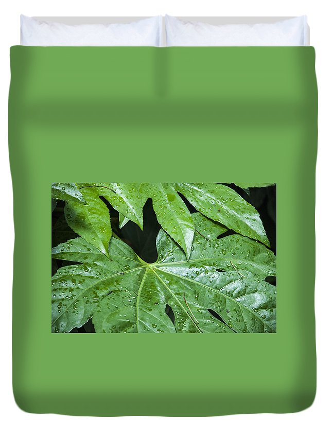Asia Duvet Cover featuring the photograph 4967 by David Lange