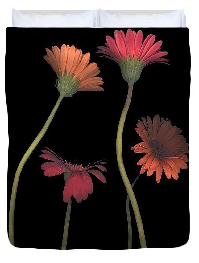 Black Duvet Cover featuring the photograph 4daisies On Stems by Heather Kirk