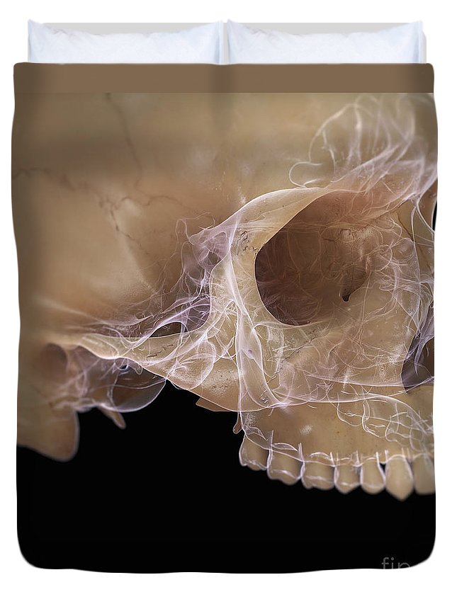 Digitally Generated Image Duvet Cover featuring the photograph Anatomy Of The Skull by Science Picture Co