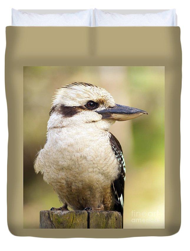 Australia Duvet Cover featuring the photograph Kookaburra by Tim Hester