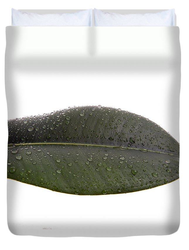 Leaf Duvet Cover featuring the photograph Leaf by Scott Sanders