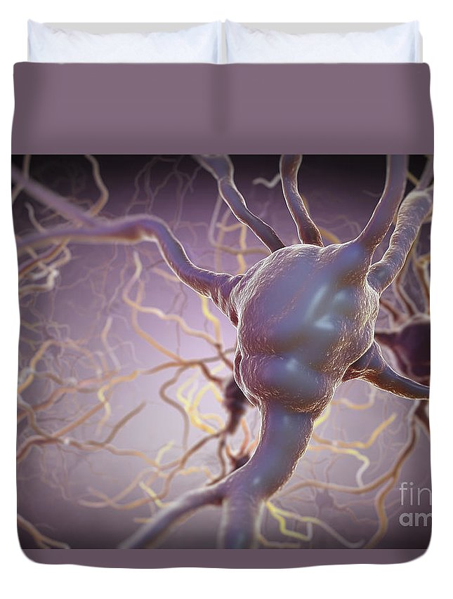 Biomedical Illustration Duvet Cover featuring the photograph Neuron by Science Picture Co