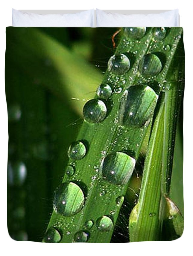 Rain Duvet Cover featuring the photograph Raindrops by Carol Lynch
