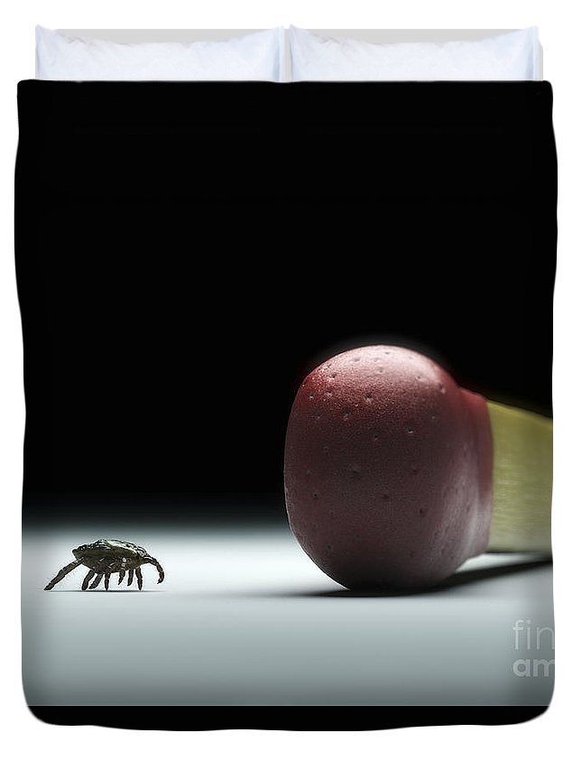 Digitally Generated Image Duvet Cover featuring the photograph Scale Comparison Of A Tick by Science Picture Co