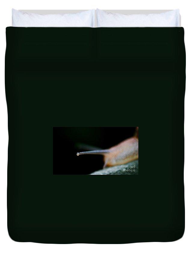 Snail Duvet Cover featuring the photograph Snail by Henrik Lehnerer