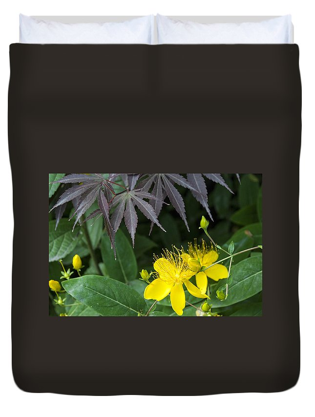 Asia Duvet Cover featuring the photograph 5164 by David Lange