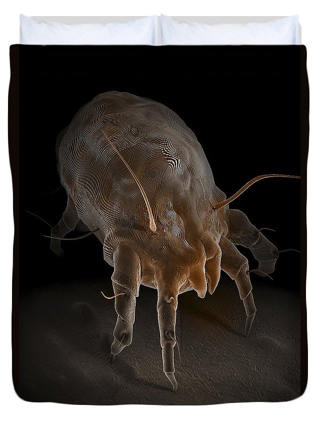 Sick Duvet Cover featuring the photograph Dust Mite by Science Picture Co