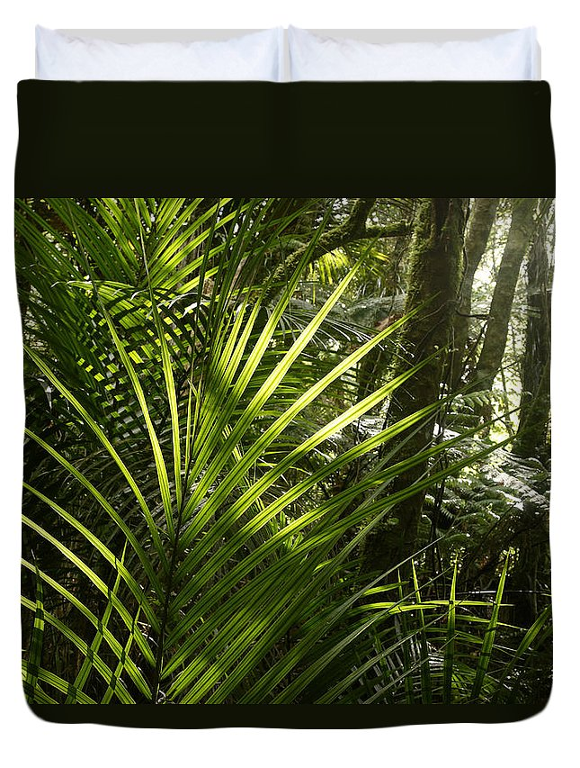 Rain Forest Duvet Cover featuring the photograph Jungle Light by Les Cunliffe