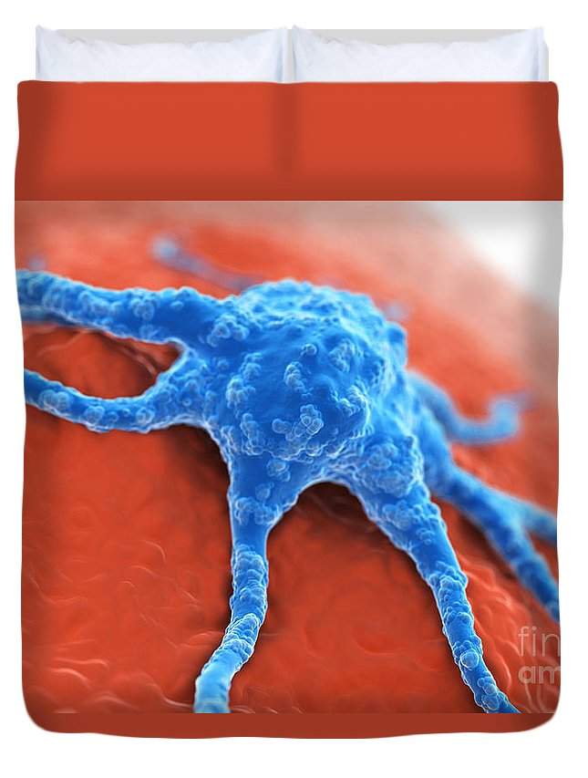 Digitally Generated Image Duvet Cover featuring the photograph Cancer Cell by Science Picture Co