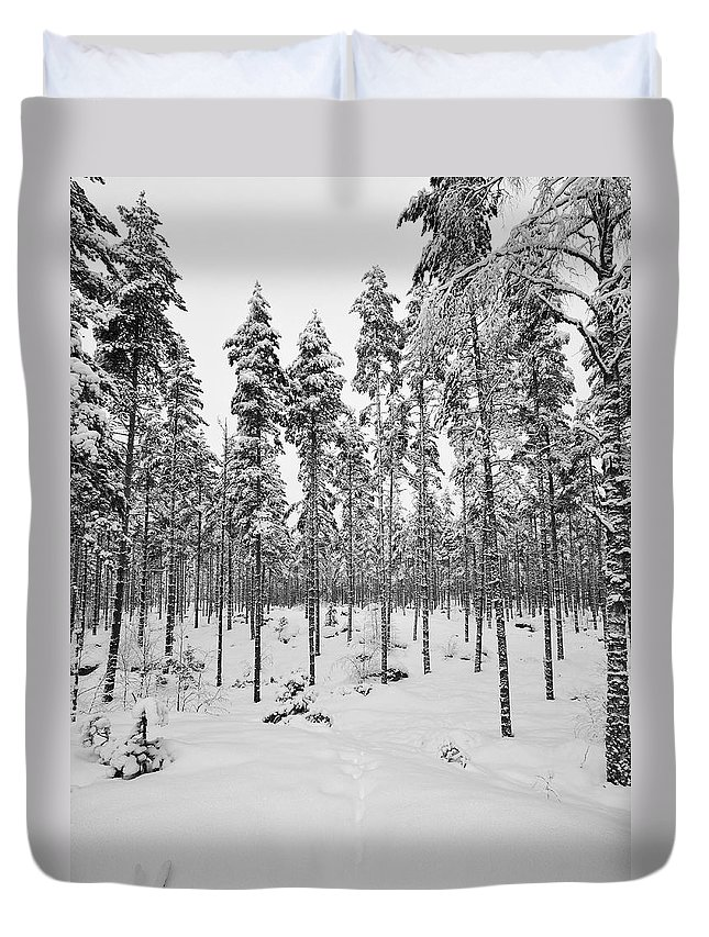 Finland Duvet Cover featuring the photograph Pine Forest Winter by Jouko Lehto