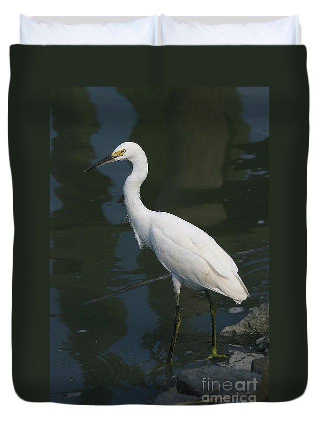 Egret Duvet Cover featuring the photograph Snowy Egret by Ken Keener