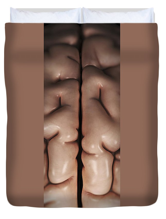 Vertical Duvet Cover featuring the photograph The Human Brain by Science Picture Co