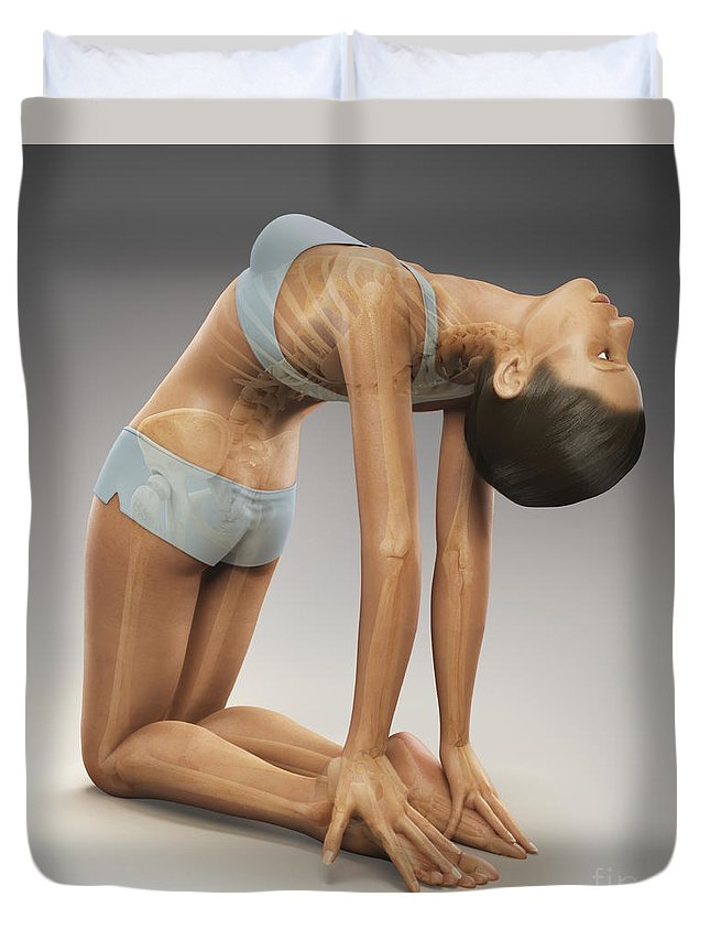 Vertebrae Duvet Cover featuring the photograph Yoga Camel Pose by Science Picture Co