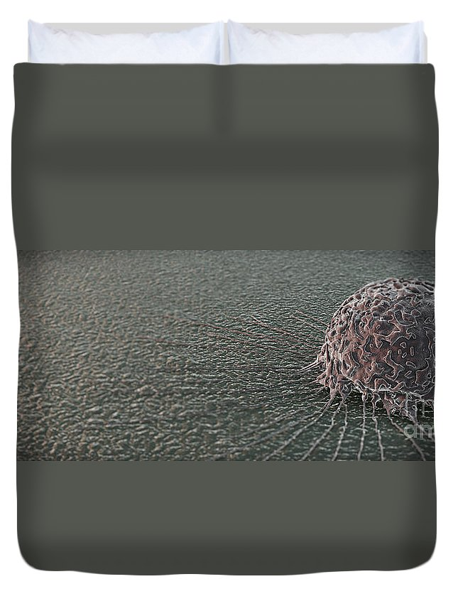 Cells Duvet Cover featuring the photograph Breast Cancer Cell by Science Picture Co