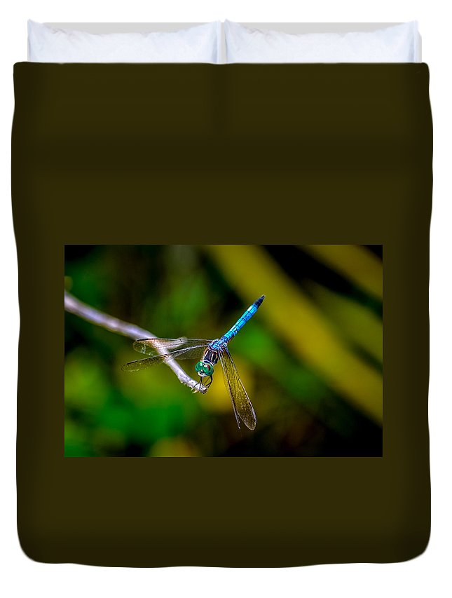 Dragonfly Duvet Cover featuring the photograph Dragonfly by Michael Brooks