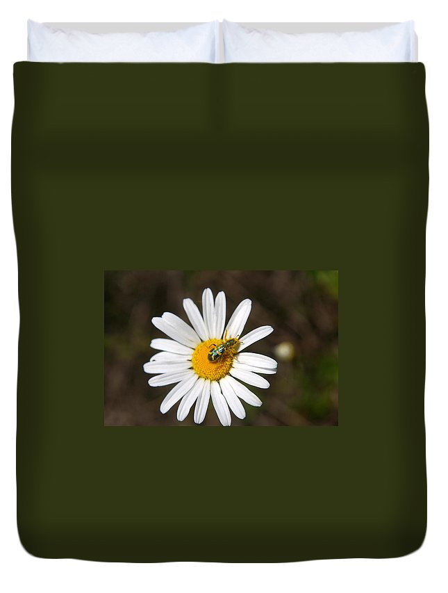 Duvet Cover featuring the photograph A Beattle On A Daisy by Jeff Swan