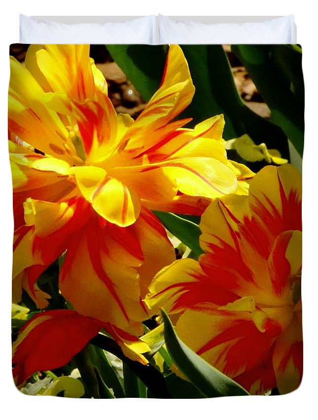 Fine Art Duvet Cover featuring the photograph A Beautiful Fire by Rodney Lee Williams