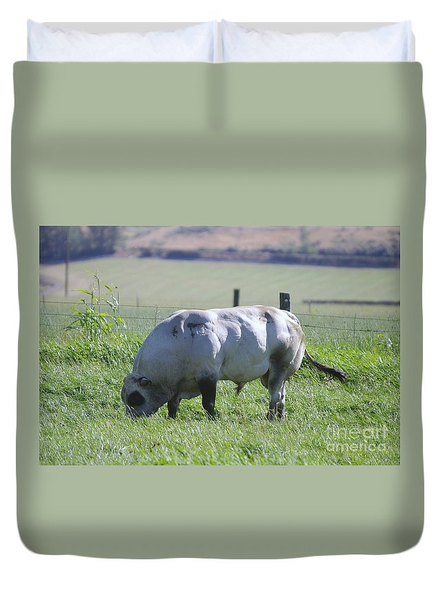 Cattle.bulls Duvet Cover featuring the photograph A Big Big Bull by Jeff Swan