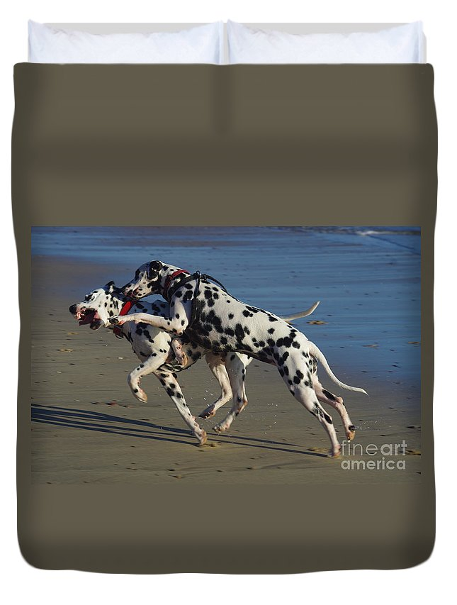 Clash Of Wills Duvet Cover featuring the photograph A Clash Of Wills by Blair Stuart