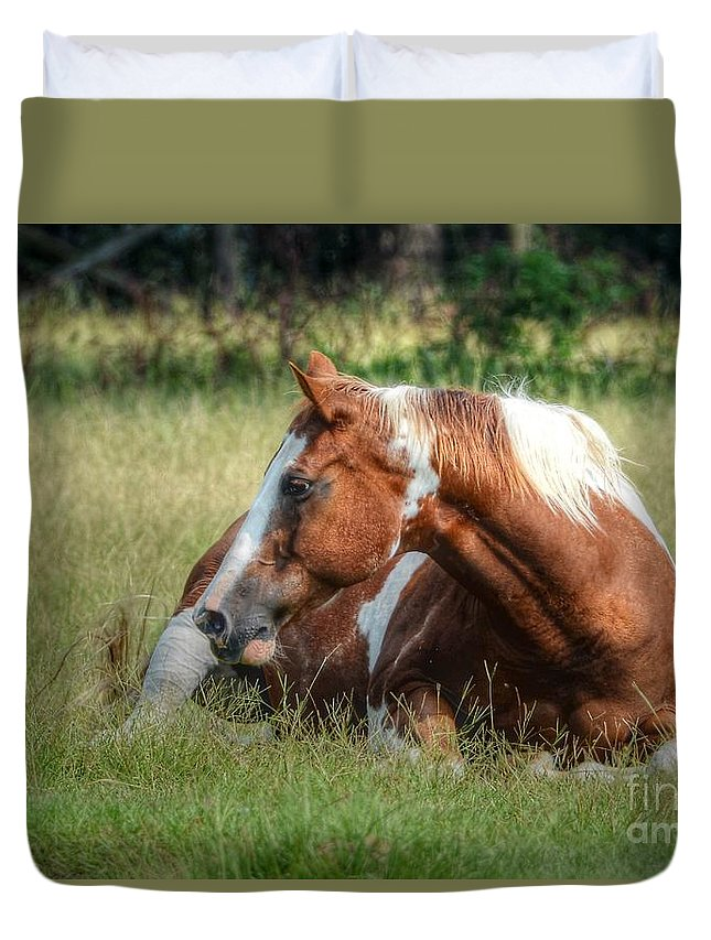 Horse Duvet Cover featuring the photograph A Comfy Resting Place by Kathy Baccari