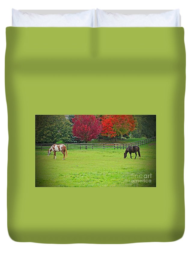 Horse Duvet Cover featuring the photograph A Couple Horses And Beautiful Autumn Trees by Adri Turner