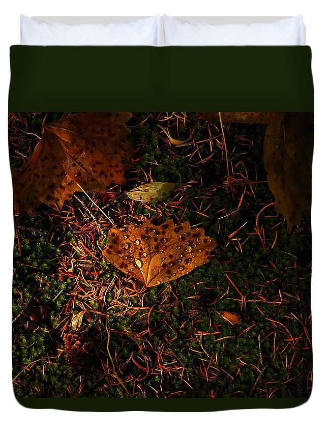 Leaves Duvet Cover featuring the photograph A Dew Covered Death by Jeff Swan