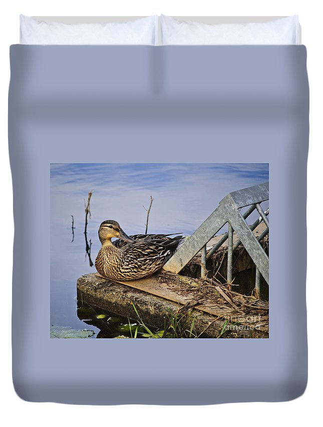 Duck Duvet Cover featuring the photograph A Duck With Style by Diego Re